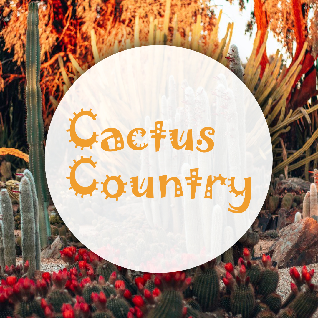 cactus-country-tile